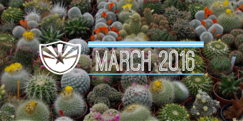 Things to Do Around Phoenix – March 2016