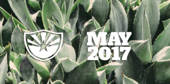 Things to Do Around Phoenix – May 2017